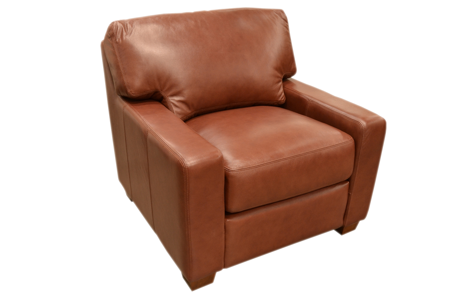Albany Chair Arizona Leather Interiors