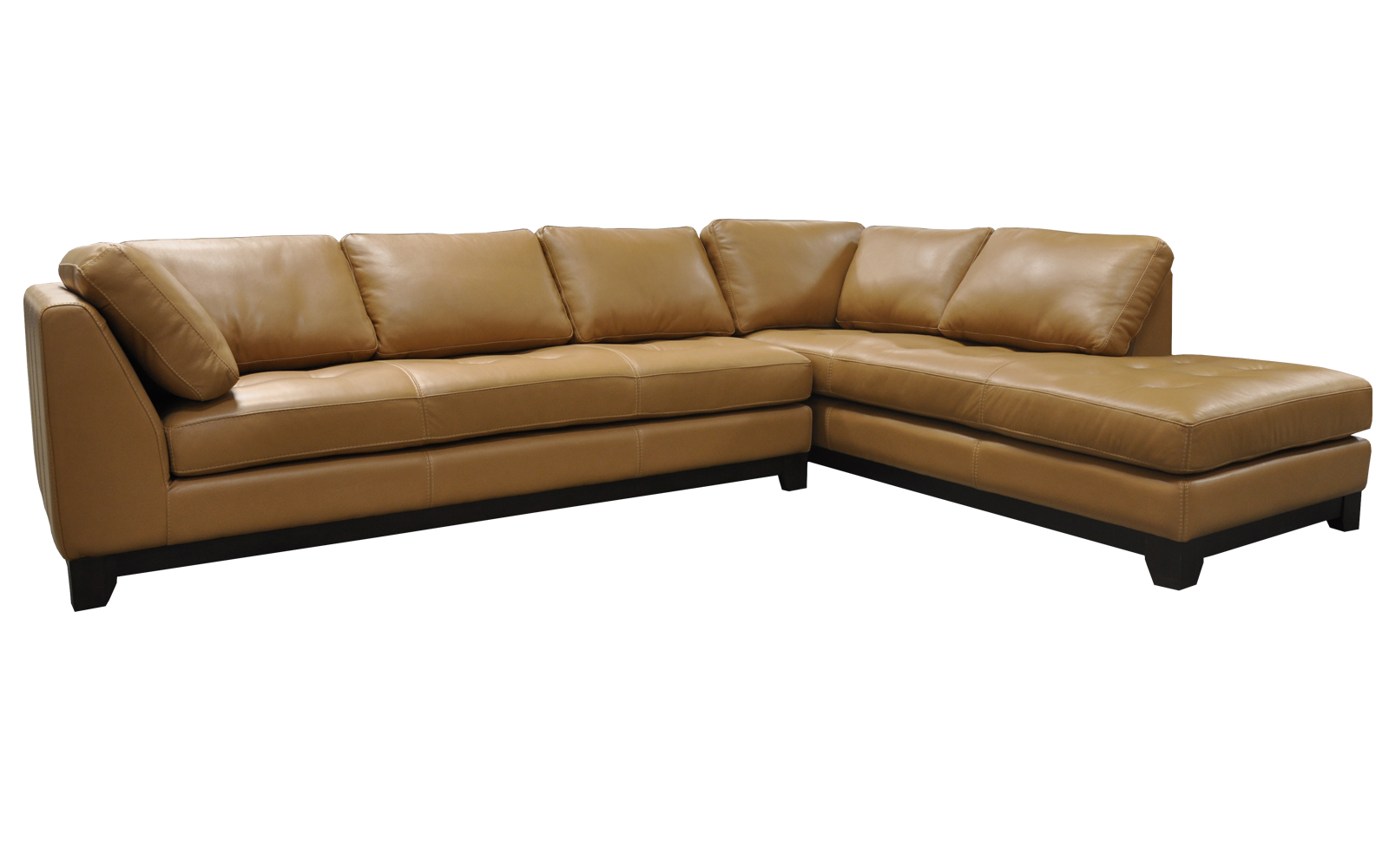 Arizona leather sofas abbyson living arizona leather for Arizona leather sectional sofa with chaise